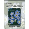 wildflowercards_195507595